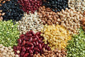 Svariati legumi multicolore