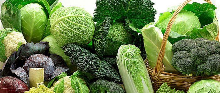 Brassicacee (broccoli)
