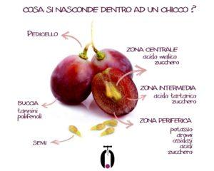 Evitare le bucce degli acini dell'uva