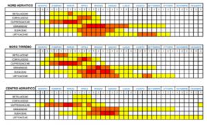Calendario dei pollini