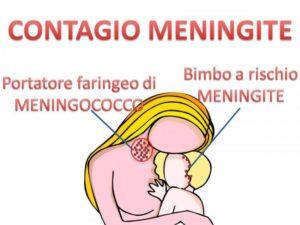 Contagio meningite