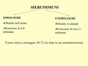 Sieri immuni